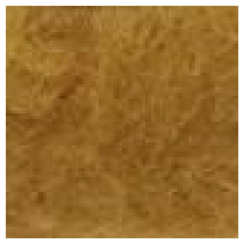 Alpaca Maya