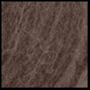 308 Brun